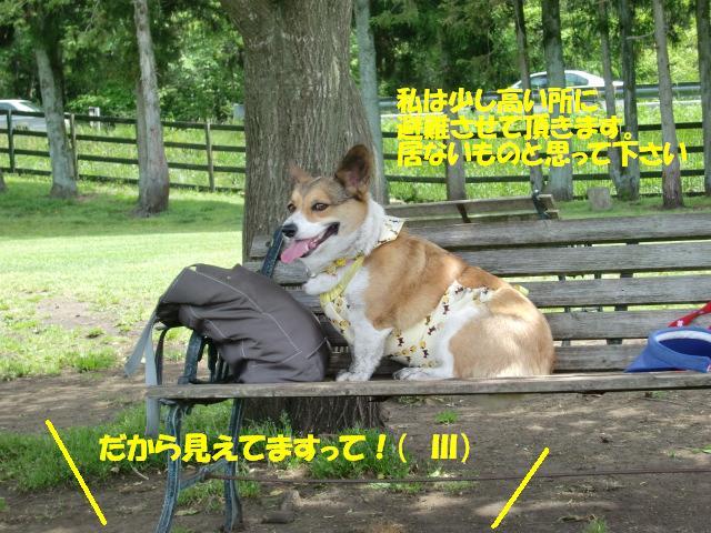 f0182121_23184359.jpg