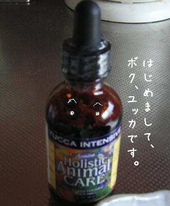 f0068501_12134.jpg