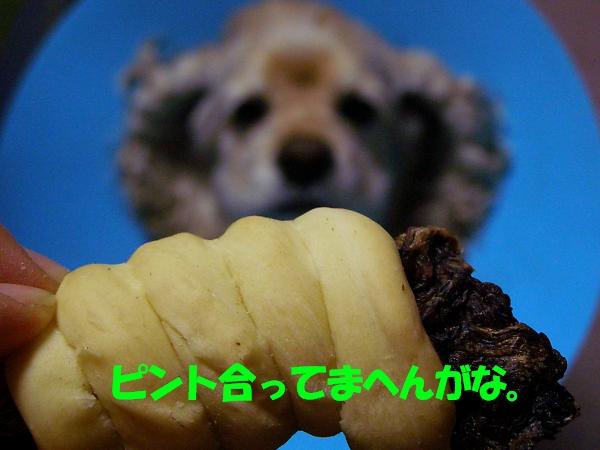 b0067012_21152070.jpg