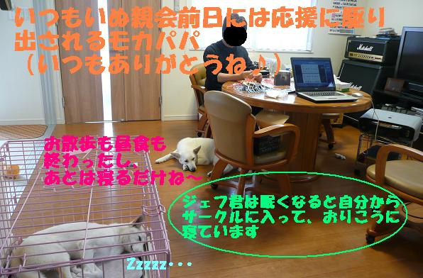 f0121712_13393678.jpg