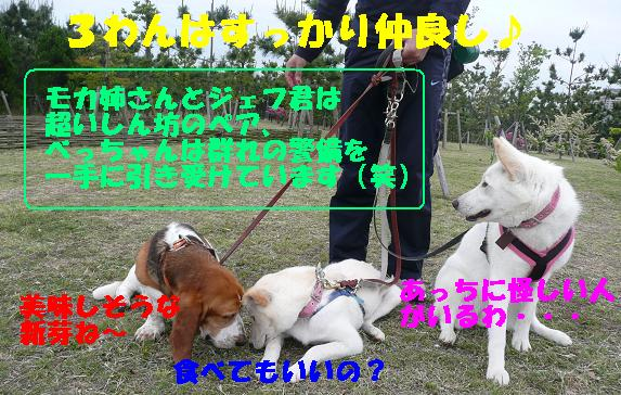 f0121712_13402560.jpg