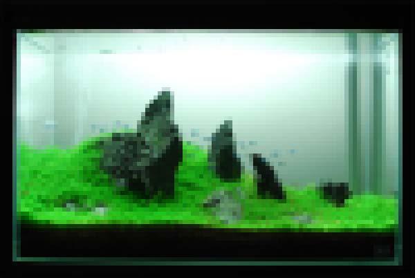 f0172612_23294851.jpg