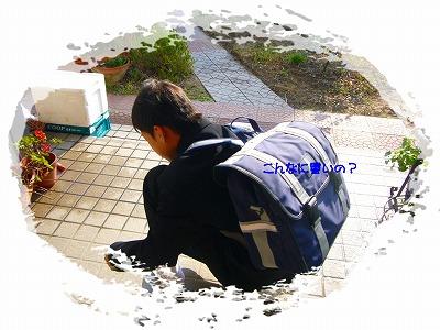yちゃん  入学 おめでとう_e0092118_22262650.jpg