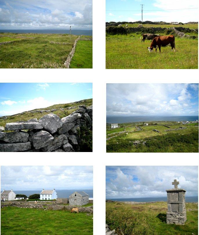アイルランド編(48):イニシュモア島(08.8)_c0051620_841223.jpg