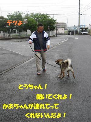 f0143123_2058571.jpg
