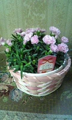 母の日_e0040673_1434940.jpg