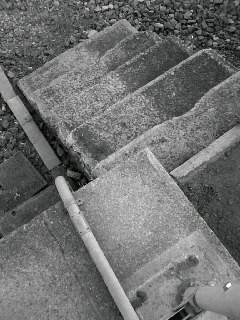 f0100480_19594511.jpg
