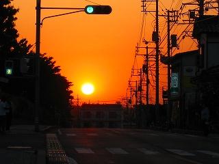 鳥取大学 家中先生_e0002820_2394282.jpg