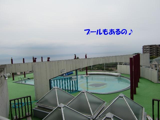 f0182121_703654.jpg