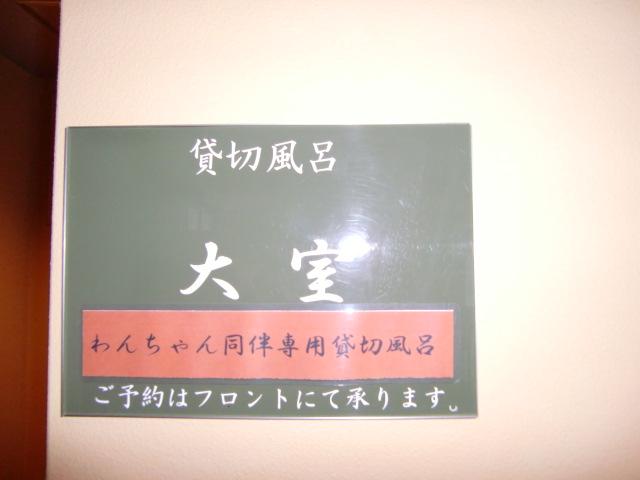 f0182121_762712.jpg