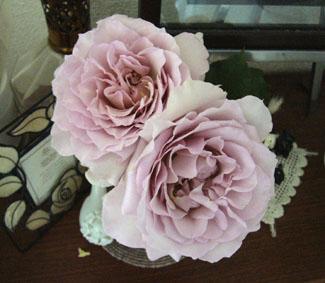 薔薇園へ_a0111125_202984.jpg