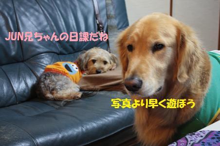 写真より遊ぼうよ!_f0114128_21283440.jpg