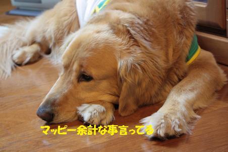写真より遊ぼうよ!_f0114128_21315812.jpg