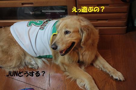 写真より遊ぼうよ!_f0114128_213646.jpg