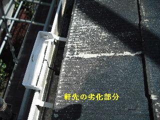 f0031037_21181794.jpg