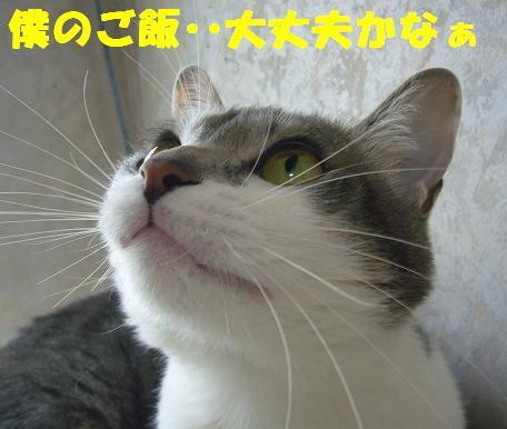 品切れ~_f0002743_143613100.jpg