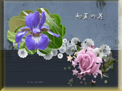 b0134159_11225319.jpg