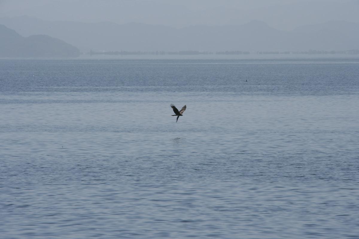 琵琶湖景 _f0021869_23445656.jpg
