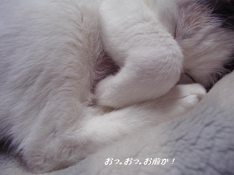 b0147203_162851.jpg