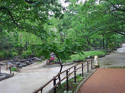 津軽稲荷神社   (江戸屋敷にあった神社11)  _c0187004_22254980.jpg