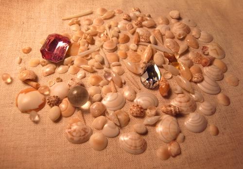 思い出の貝殻_e0177207_23445041.jpg