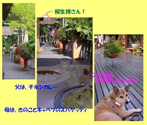 f0057509_1419146.jpg