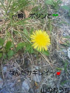f0085327_21531686.jpg