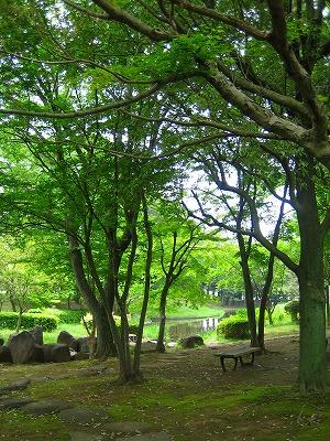 風薫る・・かつらぎ公園_b0100229_136537.jpg