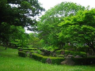 風薫る・・かつらぎ公園_b0100229_1374186.jpg