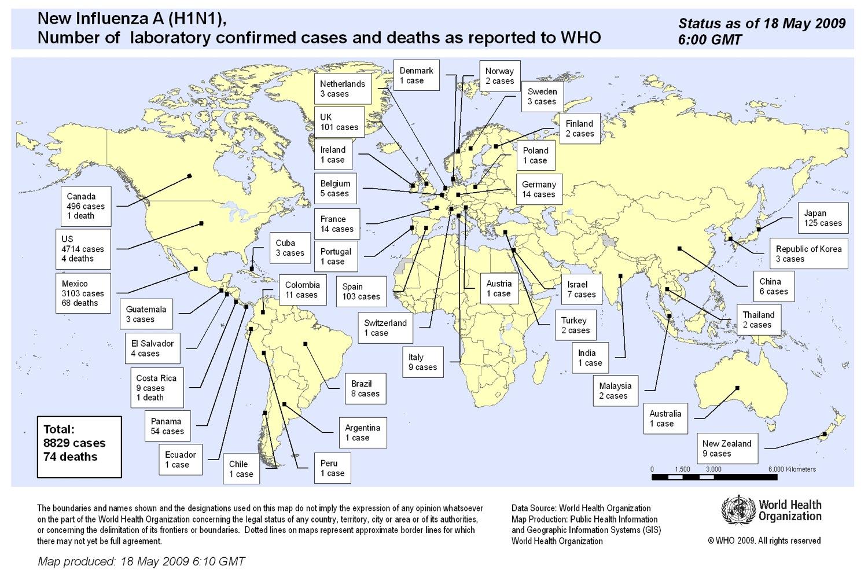 H1N1 インフルエンザ_b0028732_174667.jpg