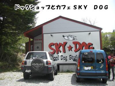 d0020869_1355446.jpg