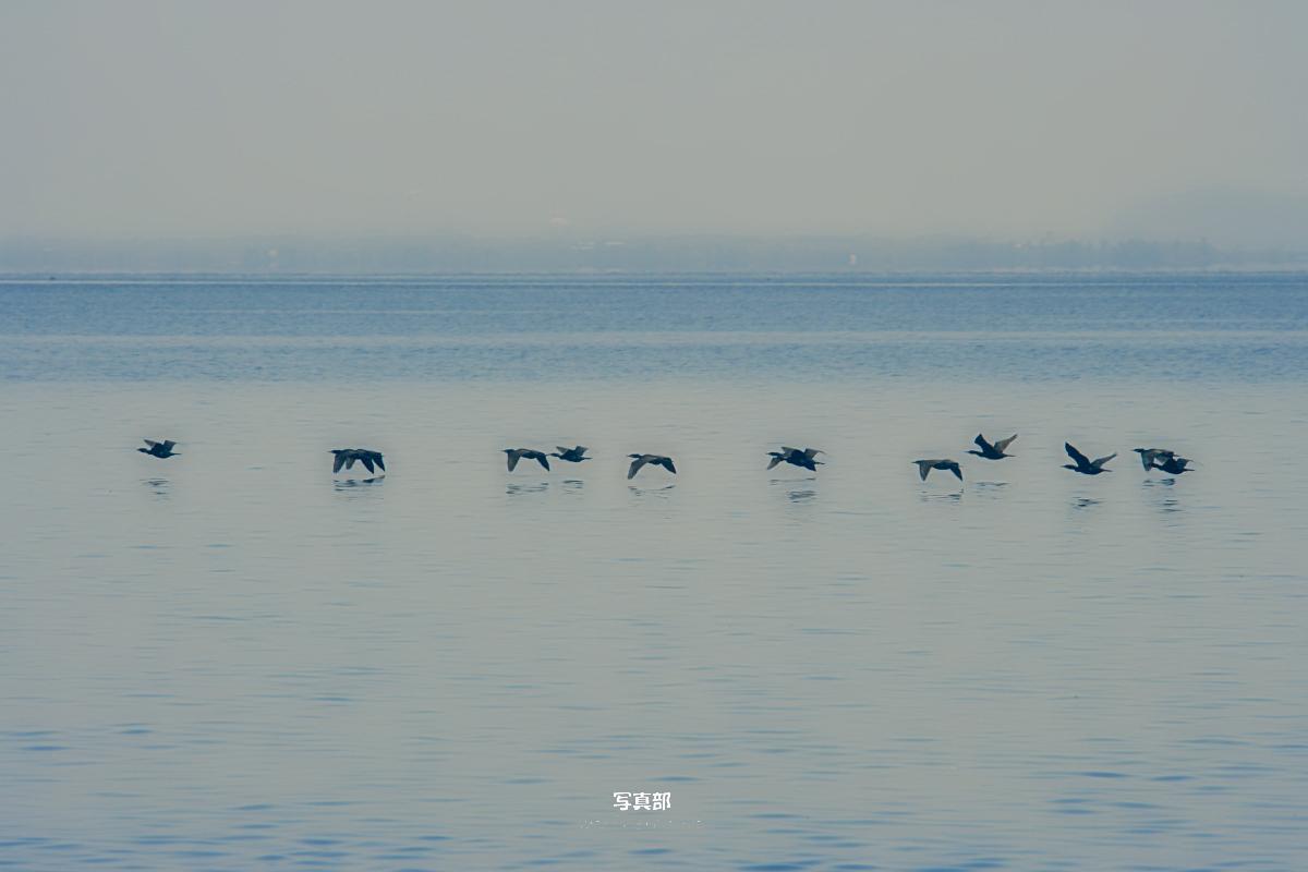 琵琶湖景  2_f0021869_2320368.jpg