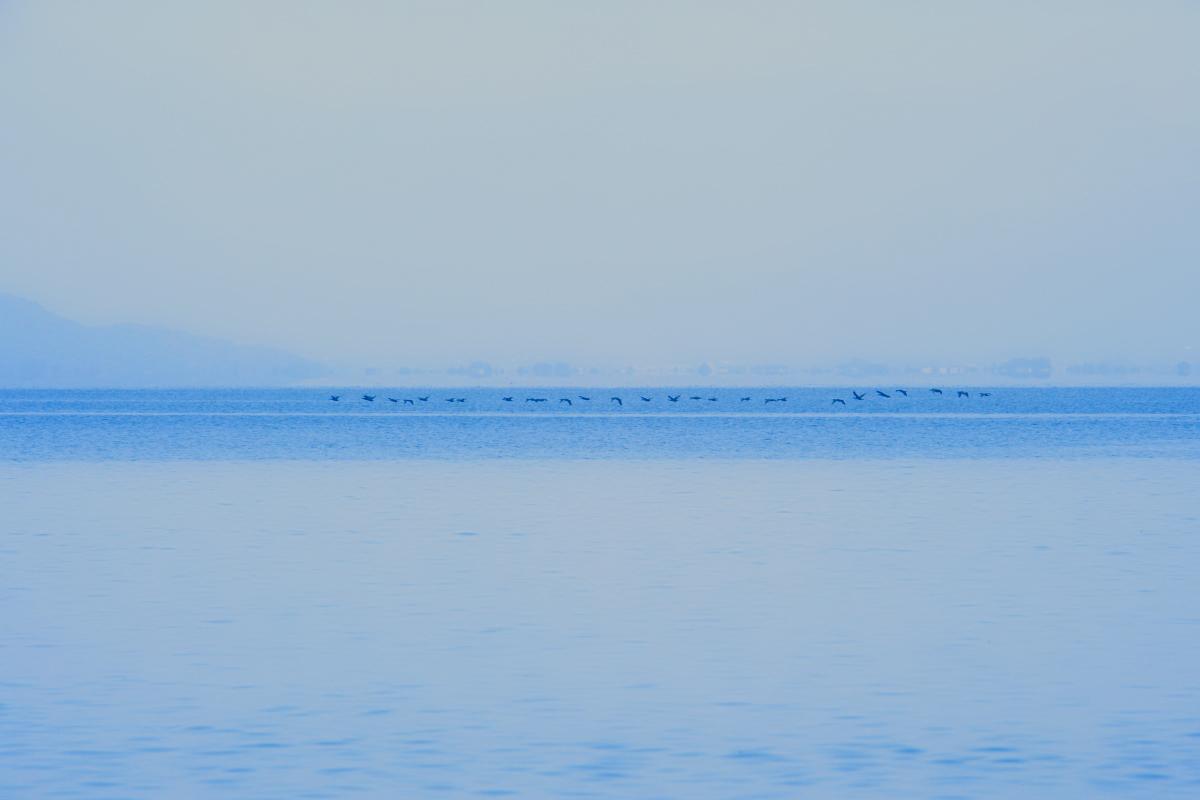 琵琶湖景  2_f0021869_23211977.jpg