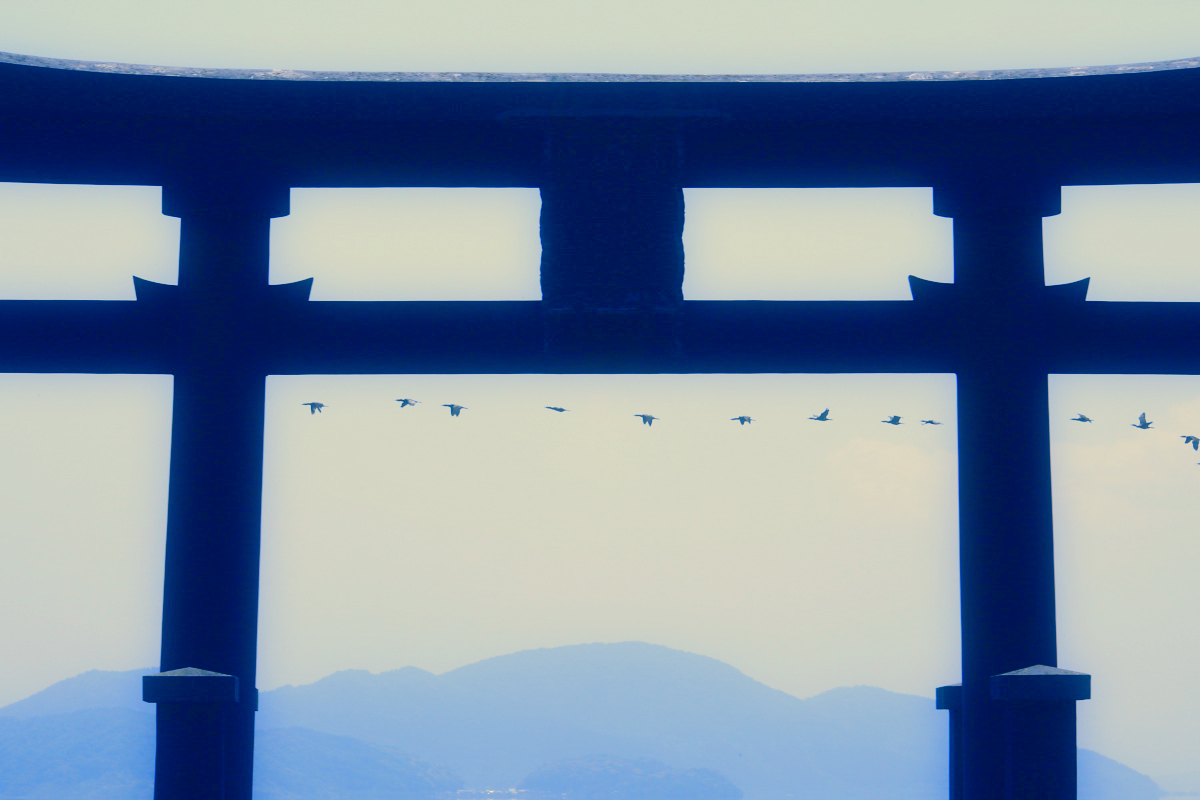 琵琶湖景  2_f0021869_23213668.jpg