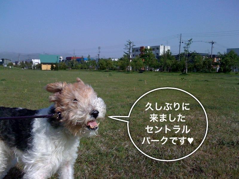 f0168374_2204277.jpg