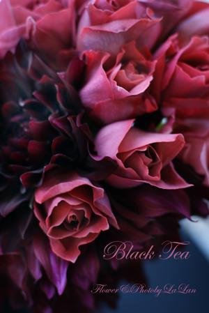 Rose Tea Partyのアレンジオーダー_d0141376_1235284.jpg