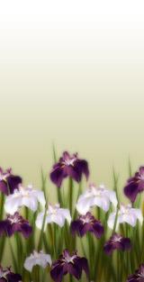 f0063889_9522348.jpg