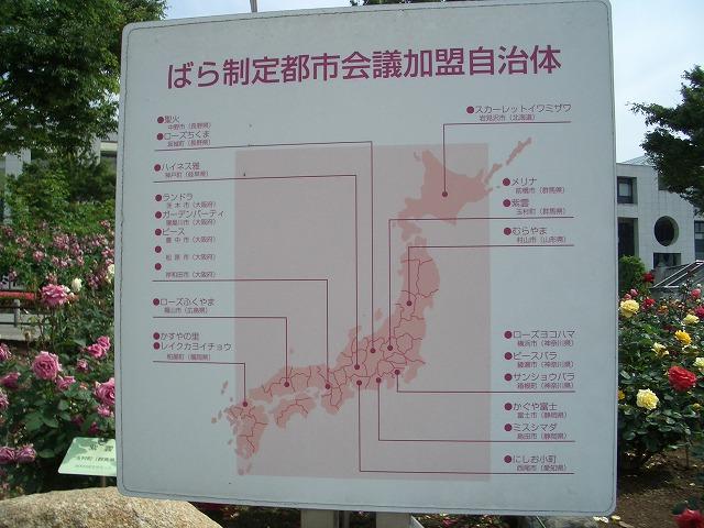 富士市は「バラのまち」です!_f0141310_211521.jpg