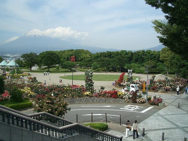 富士市は「バラのまち」です!_f0141310_29643.jpg