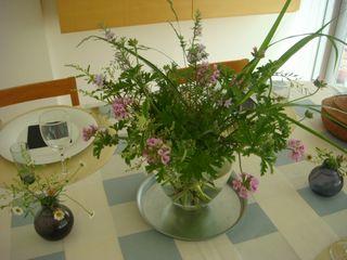庭の花_e0134337_705579.jpg