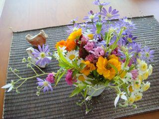 庭の花_e0134337_725647.jpg