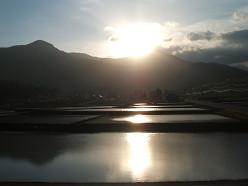 朝の風景 ~田んぼ~  5/20_e0123748_14122653.jpg