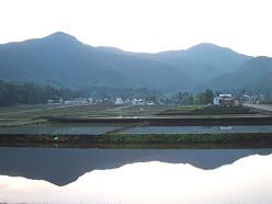 朝の風景 ~田んぼ~  5/20_e0123748_14464397.jpg