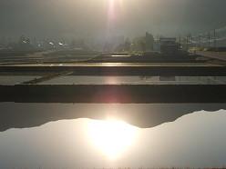 朝の風景 ~田んぼ~  5/20_e0123748_14471870.jpg