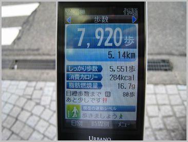 f0099455_21404973.jpg