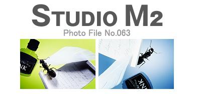STUDUI M2 Photo File No.063「クロオオアリ」_a0002672_1194987.jpg