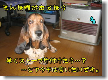 f0204072_9475357.jpg