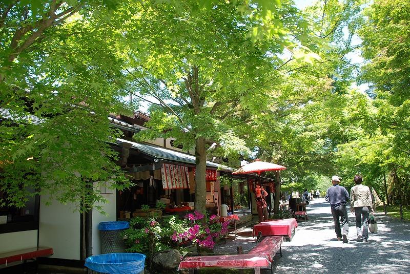 京都の旅あれこれ①_c0187781_20181064.jpg