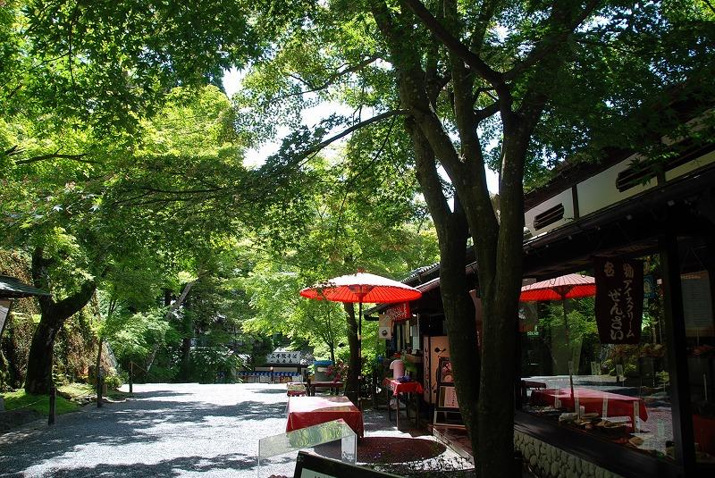 京都の旅あれこれ①_c0187781_20195884.jpg