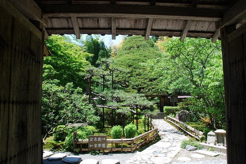 京都の旅あれこれ①_c0187781_2050265.jpg